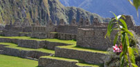 Machu Picchu and the Amazon Jungle